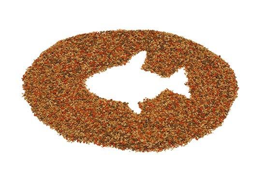 غذای ماهی پلت(پلیت)